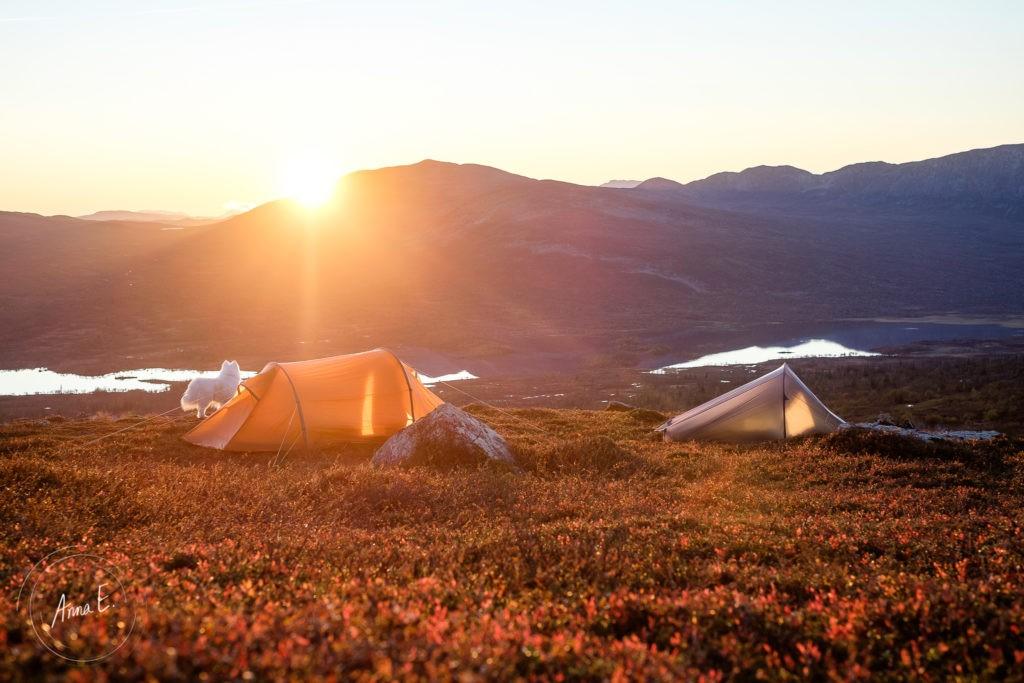 Solnedgång i fjällen i Offerdal i Jämtland